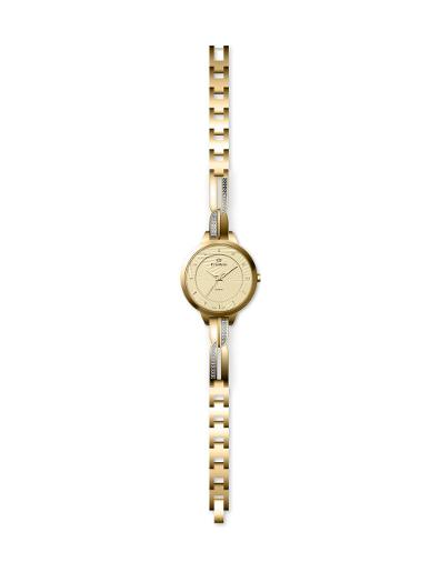 Everswiss Women's Ladies Fancy  Champ Dial Yellow Gold Plated Brass Watch. 2804-LGC